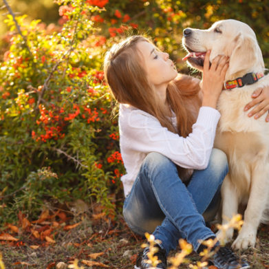 Pet Bereavement Counselling Course